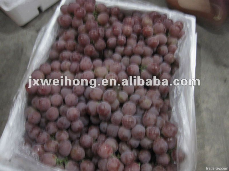 Fresh red grape fruit
