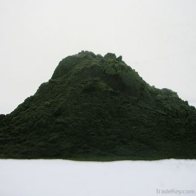 nutrition spirulina powder in bulk