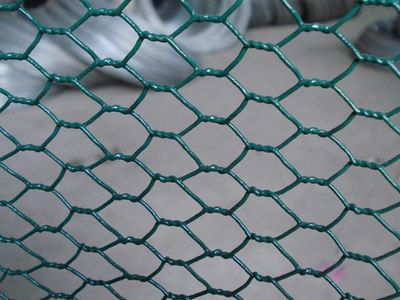 manufacture of Chicken mesh