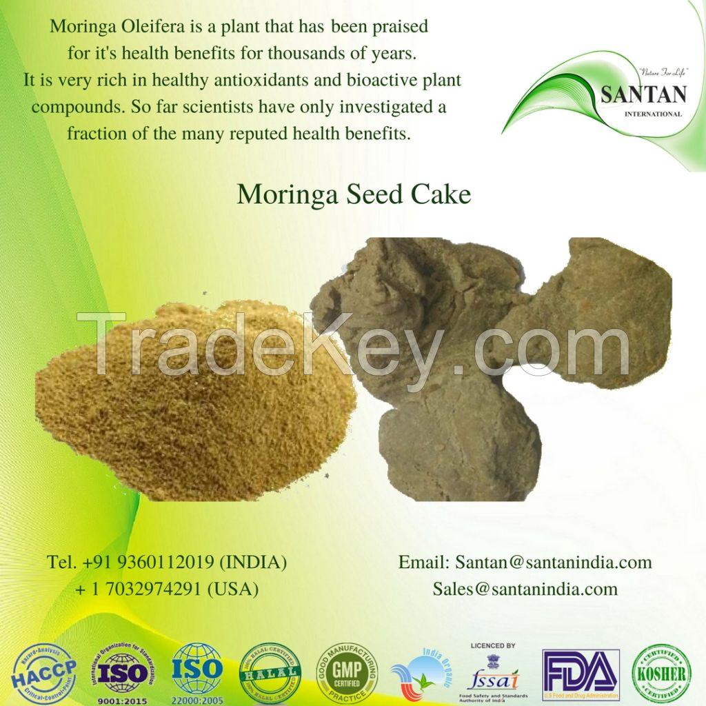Morninga Seed Cake