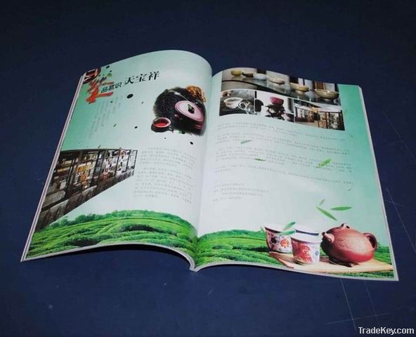 catalogue , brochure