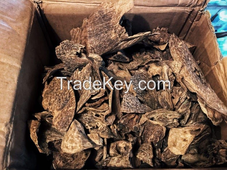Oudh Oil, Agarwood Oil