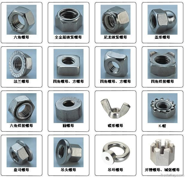 ASTM A194 B8 hex nut/ stainless steel A2 A4 DIN934 DIN439 SS304/316