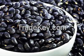 White, red speckled sugar beans kidney beans