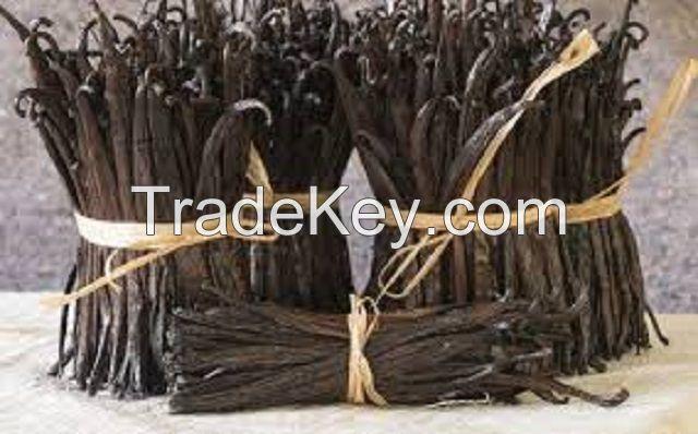 Gourmet vanilla beans from Madagascar type Bourbon vanilla