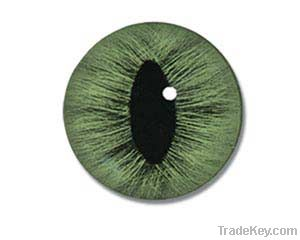 Custom Made to Order Sterling Silver Taxidermist Glass Eye Ring
