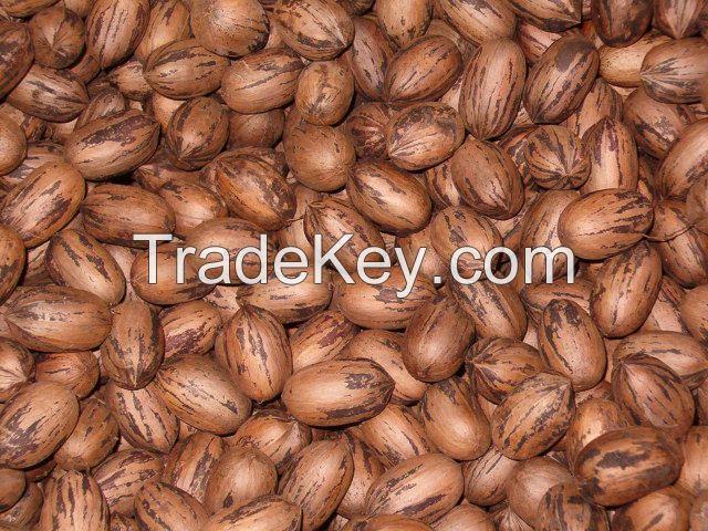 Almonds, Pecan, Cashews nuts