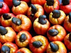 Mtwara cashew nuts
