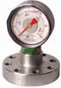 Mud Pump Pressure Gauge