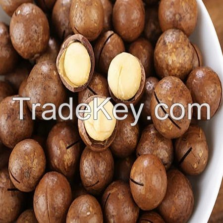 Quality Macadamia Nuts