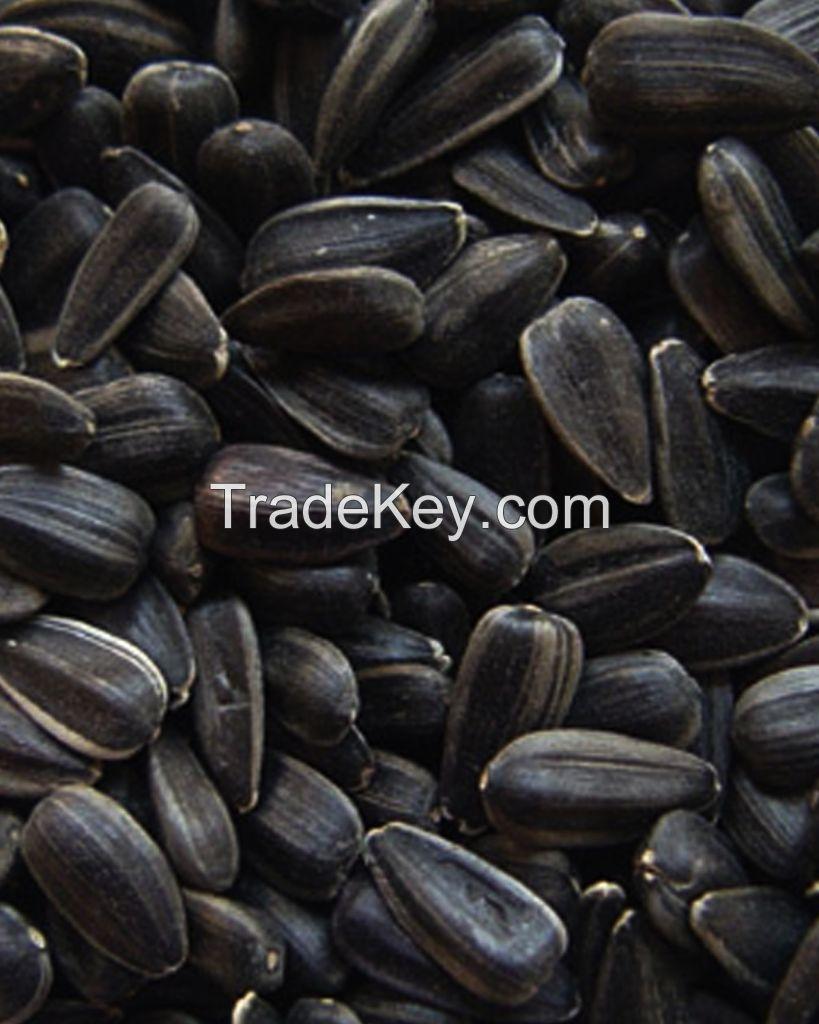 High Quality Sunflower Seeds