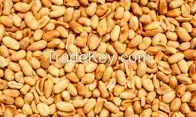 High Protein Red Skin Peanuts