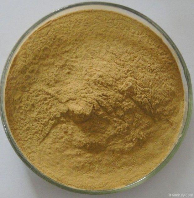 Kava Kava Extract