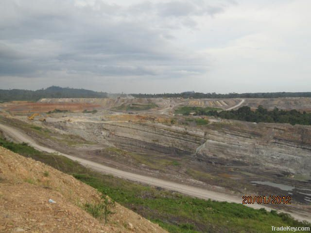 Coal from Kalimantan