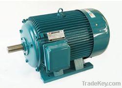 Induction Motor (3 Phase)