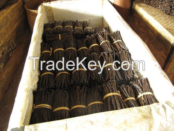 Vanilla beans from Madagascar type Bourbon vanilla