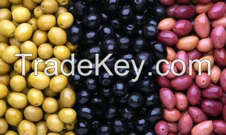 Fresh Dates | Seeds | Olives | Fenugreek Seeds