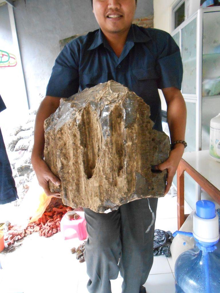 Big Red copal Amber 12 kg