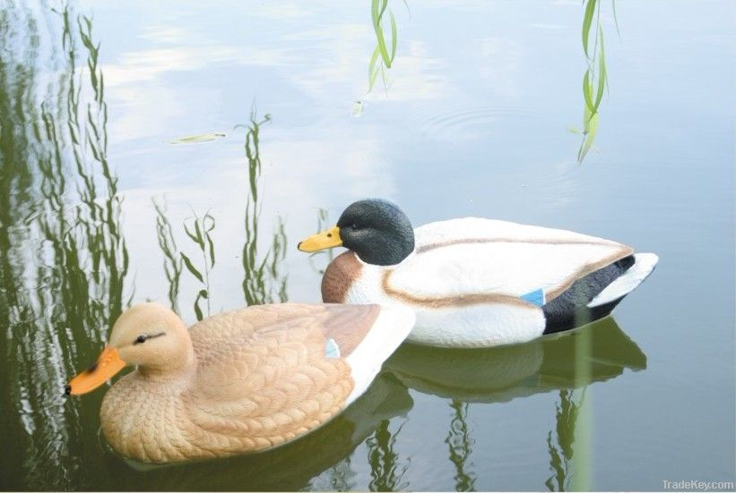 Duck decoy for hunting