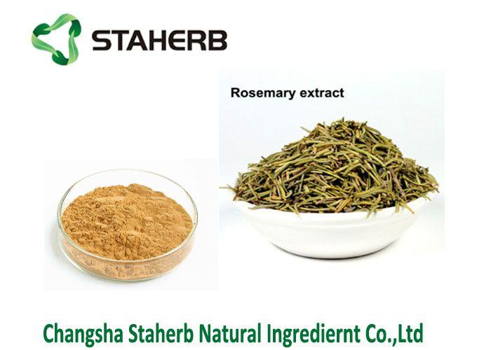 Rosmarinic acid 5-98% Rosemary leaf extract