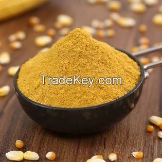 Corn gluten meal/ Yellow Corn Maize Grains for Animal Feed wholesale price