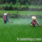 Pesticide powder