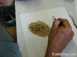Raw gold dust and nuggets