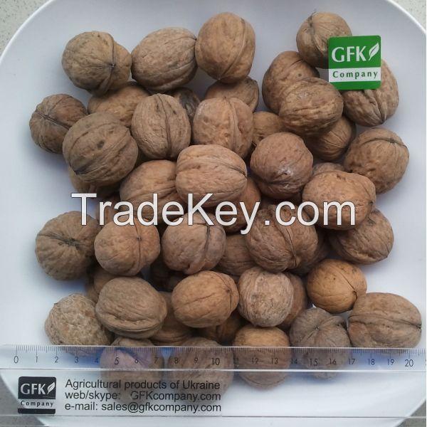 Walnuts (in shell, kernels, sliced)