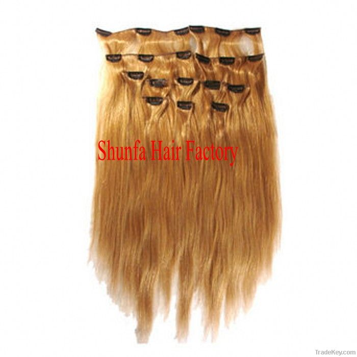 Human virgin hair weft