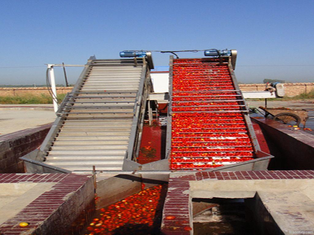 tomato paste36-38% drum 2011