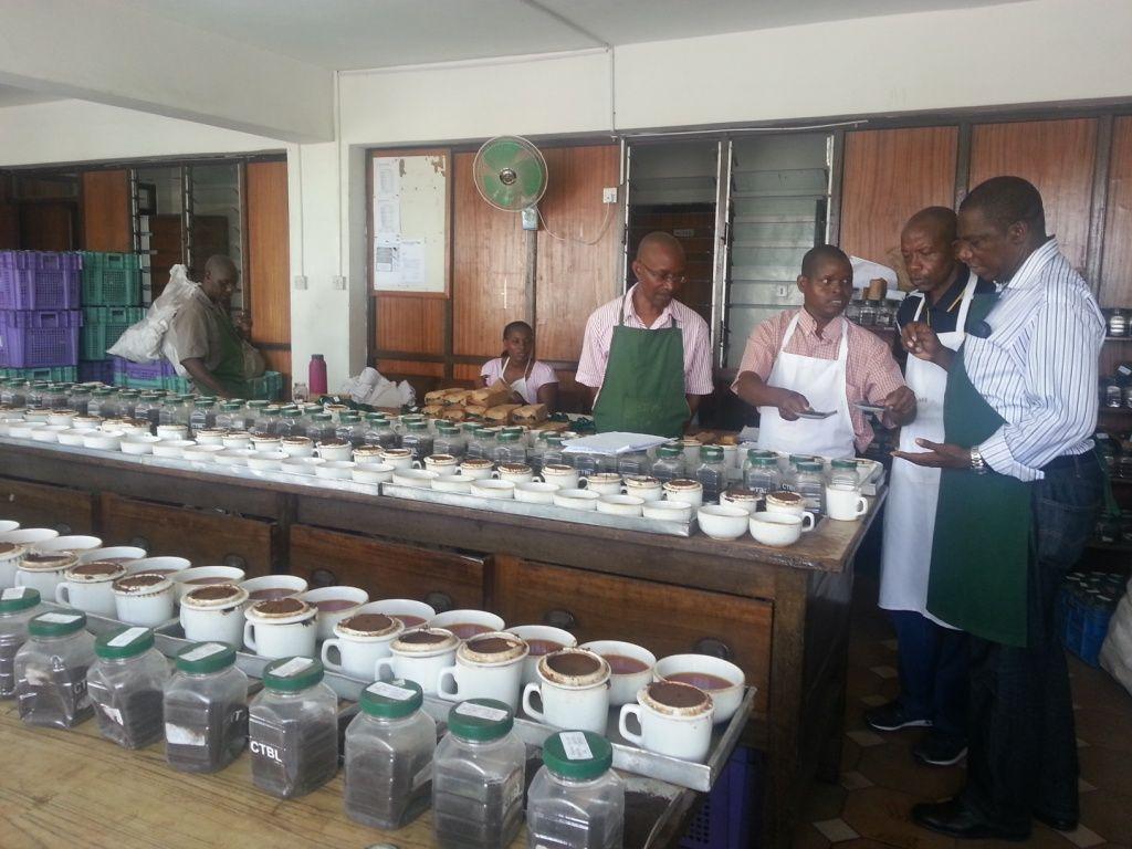 Kenya CTC Black tea grade 'A'