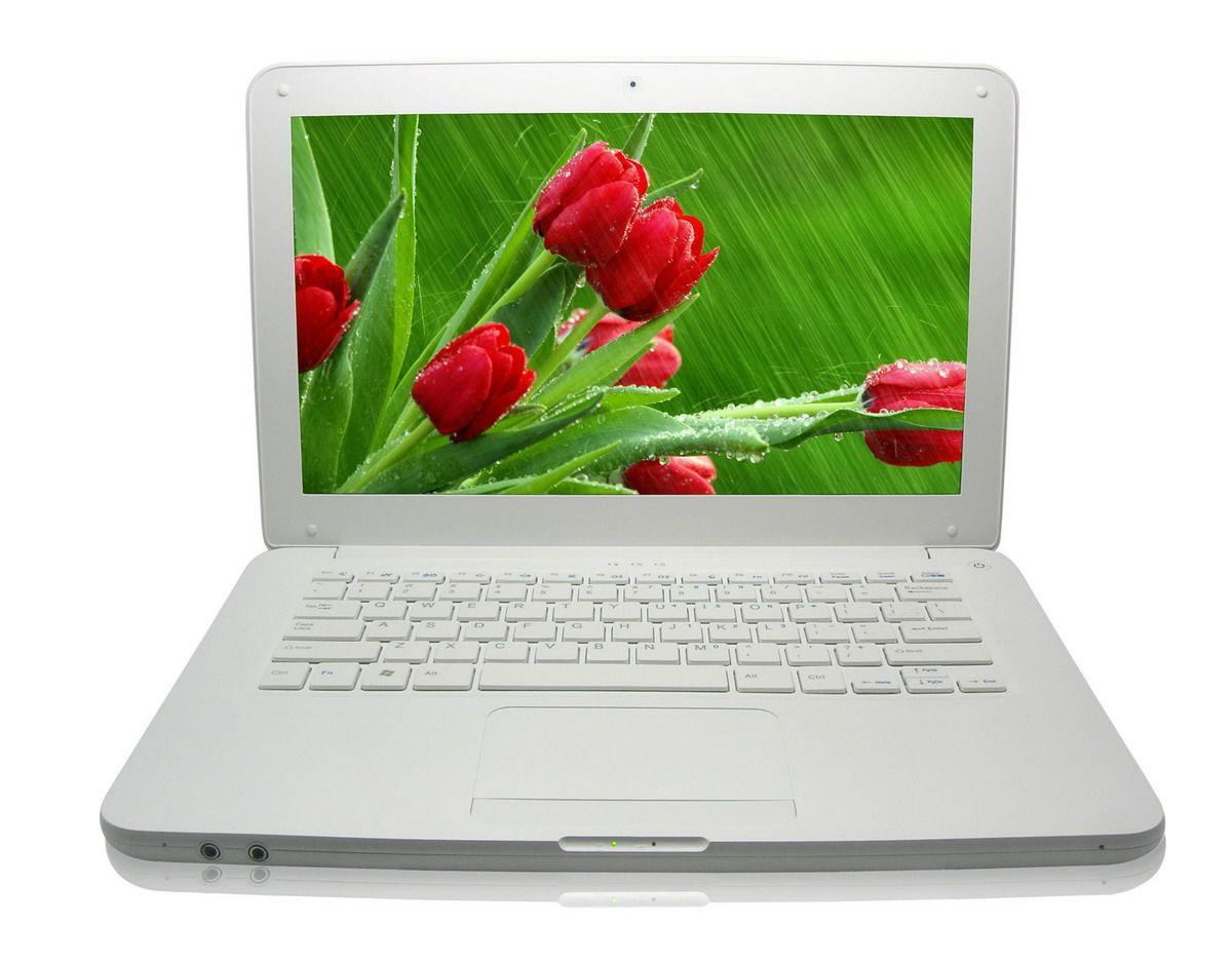 13.3?? Win7 1366*768 Laptop PC,CPU D525 Dual Core 1.86GHz+2g DDR3+250g HD,Camera,Bt,Slot-Loading DVD-ROM