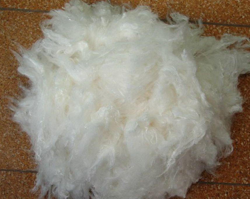 Viscose staple fiber (functional)