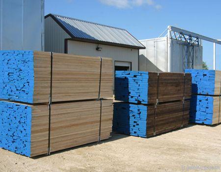 Black Walnut Sawn Timber KD Lumber