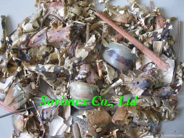 Dried Shrimp shell