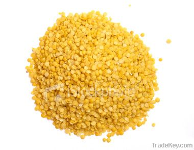 yellow lentil