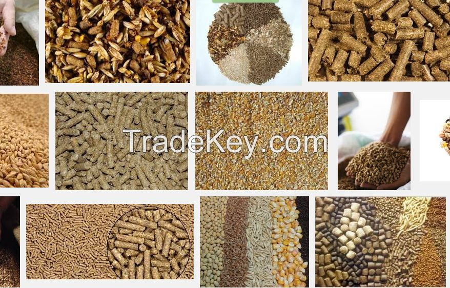 soybean meal,palm kernel meal,oatmeal,fishmeal