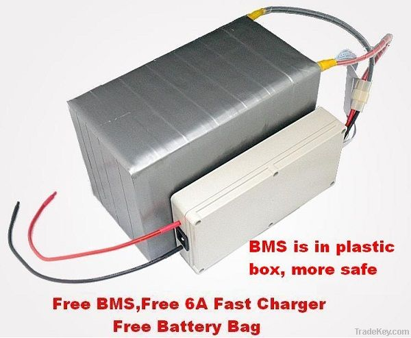 48V 20AH LiFePO4 Battery (with BMS, 6A Fast Charger and Bag)