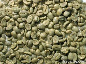 arabica coffee bean importers,arabica coffee bean buyers,arabica coffee bean importer,buy arabica coffee bean,arabica coffee bean buyer,
