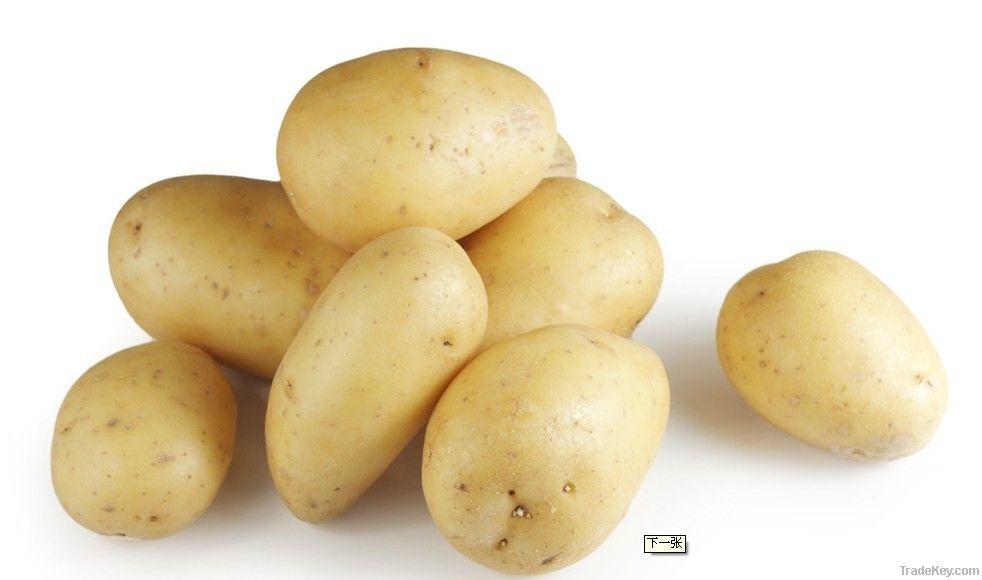 Green Food Fresh Potatoes