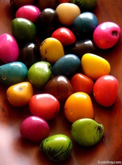 Tagua Seeds