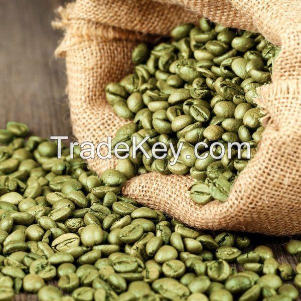 Green Arabica Coffe Beans