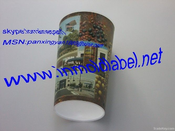 in-mold label