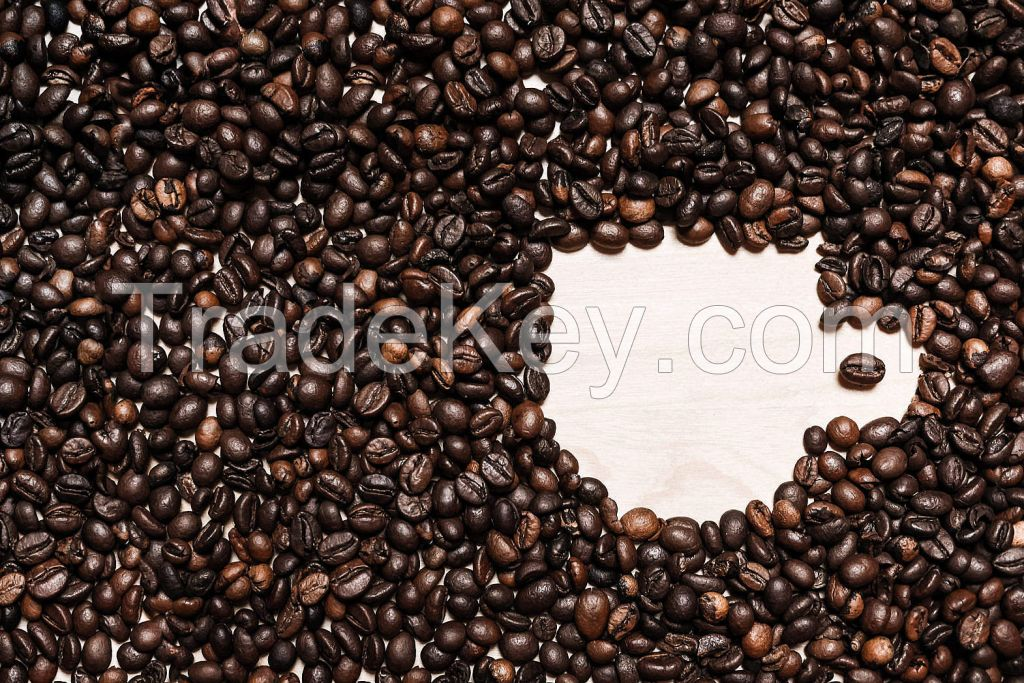 Coffee Beans, Fresh And Dried Coffee Seeds Arabica Robusta Beans