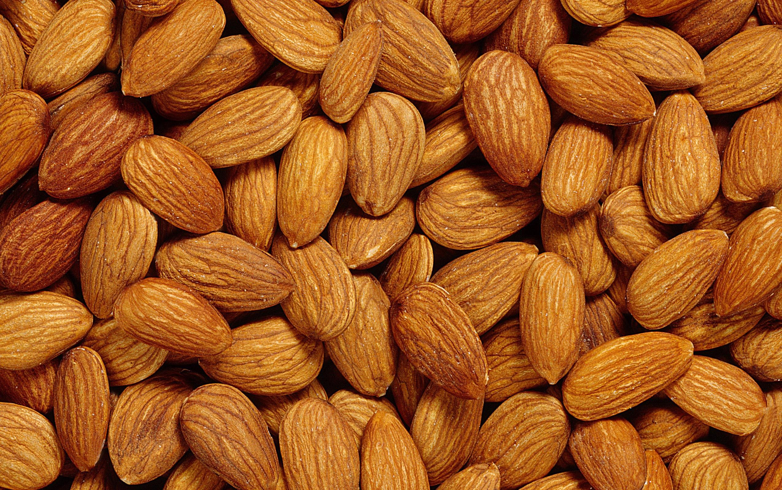 Sweet and beter apricot kernels