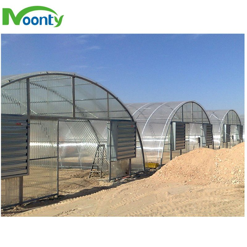 Economical Single Tunnel Greenhouse