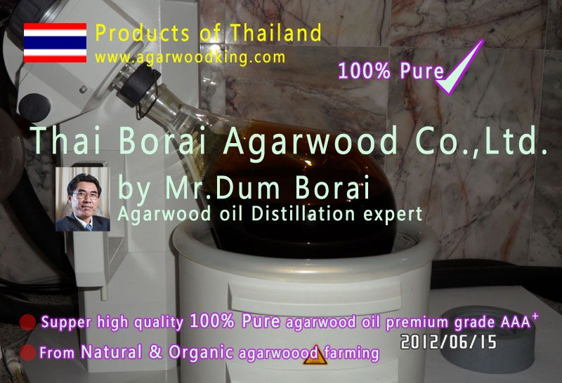 agarwood oil, essential oil, gaharu oil