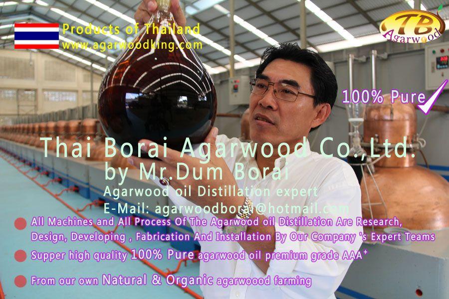 100% pure agarwood oil
