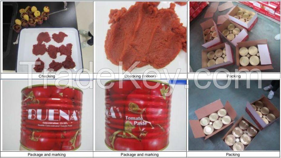 Tins Tomatoes