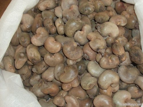 Cashew Nut Buyers | Cashew Nut Importer | Buy Cashew Nut | Cashew Nut Buyer | Low Price Cashew Nut | Cashewnut Suppliers | Cheap Cashew Nut | Wholesale Cashew Nut | Discounted Cashew Nut | Bulk Cashew Nut | Cashew Nut Suppliers